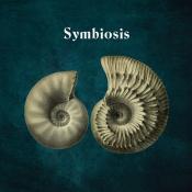 Hydrogen Sea - Symbiosis