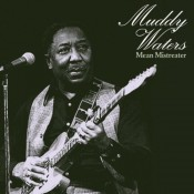 Muddy Waters - Mean Mistreater
