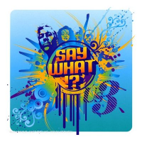 Us3 - Say What!?