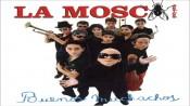 La Mosca (La Mosca Tsé-Tsé)
