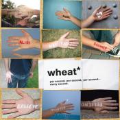 Wheat - Per Second, Per Second, Per Second...Every Second