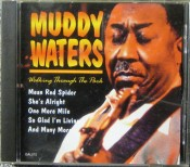 Muddy Waters - Walking Through The Park