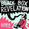 The Black Box Revelation