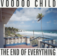 Moby - Voodoo Child – The End Of Everything