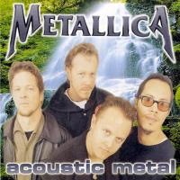 Metallica - Acoustic Metal
