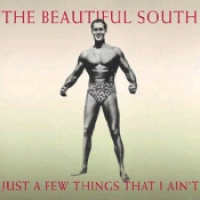 The Beautiful South - Just A Few Things That I Ain't