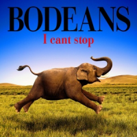 BoDeans - I Can't Stop (2015)