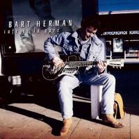 Bart Herman - Café de la gare