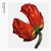 Pet Shop Boys - Release: Further Listening 2001-2004
