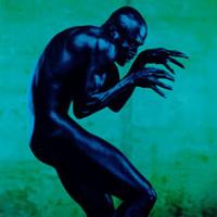 Seal - Human Being
