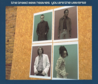 The Brand New Heavies - You Are The Universe (1997)