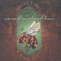 Sarah McLachlan - Rarities, B-Sides And Other Stuff