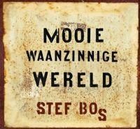Stef Bos - Mooie waanzinnige wereld