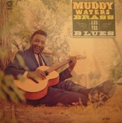 Muddy Waters - Muddy, Brass And The Blues