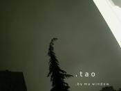 TAO - By My Window