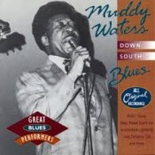 Muddy Waters - Down South Blues