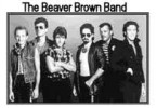 The Beaver Brown Band