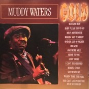 Muddy Waters - Gold
