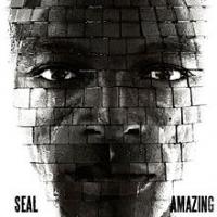 Seal - Amazing