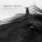 Amon Tobin - How Do You Live