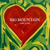 Big Mountain - One Love
