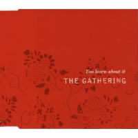 The Gathering - You Learn About It (2003)