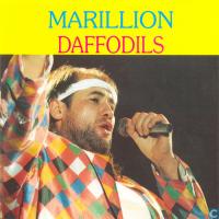 Marillion - Daffodils