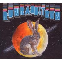 Sufjan Stevens - Run Rabbit Run