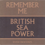 British Sea Power - Remember Me