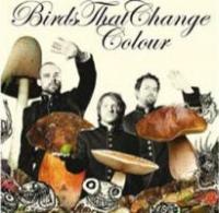 Birds That Change Colour
